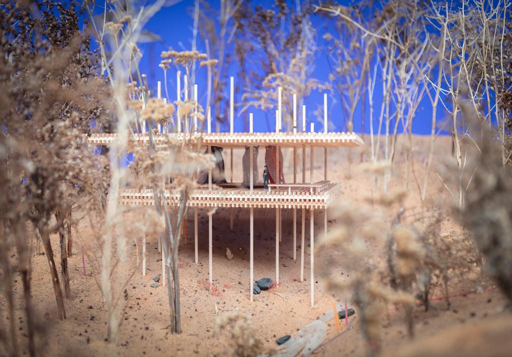 biennale pavilion 10