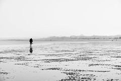 Les plaisirs de la pêche à pied #2