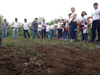 Reforestación ANP Cueva El Salitre, Tlaltizapán