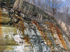 Bleeding unconformity (Chattanooga Shale over Cumberland Formation; Burkesville West Rt. 90 roadcut, Kentucky, USA) 8