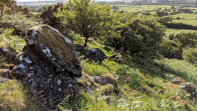 Exposed rock above the bridleway on South Down