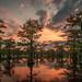 Caddo Lake Sunset by James Duckworth