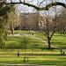 Winckley Square Park