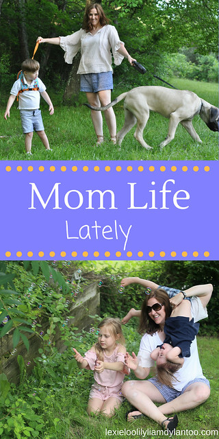 Mom Life Lately: Life with 4 kids, a husband, a blog, and a giant dog! #motherhood #momlife #Downsyndrome #momblogger