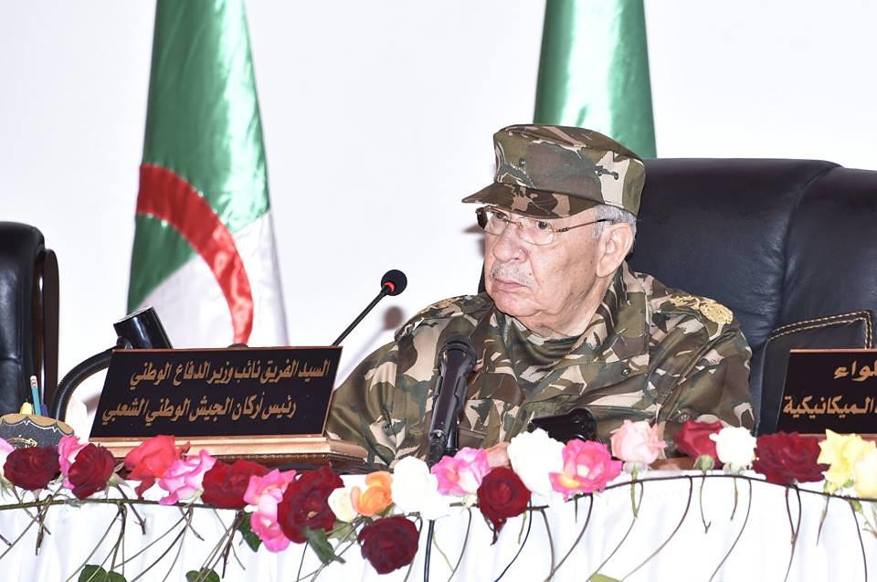 الجزائر : صلاحيات نائب وزير الدفاع الوطني - صفحة 22 27753088967_84b641b97f_b