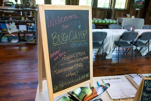 Bug Camp 2018