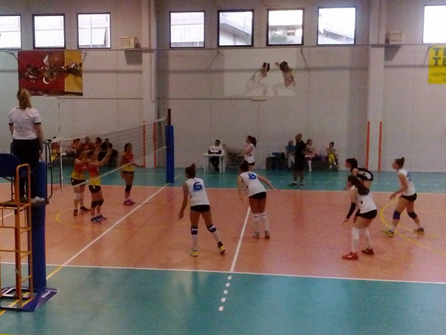 new volley