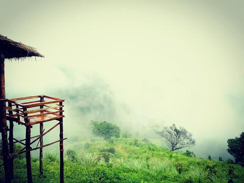 whether green nature beauty bangladesh sajek landscape