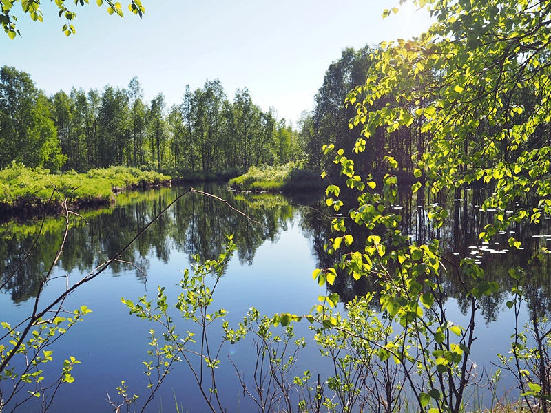 raate suomussalmi finland nature