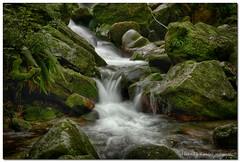 Cascata Del Trallo