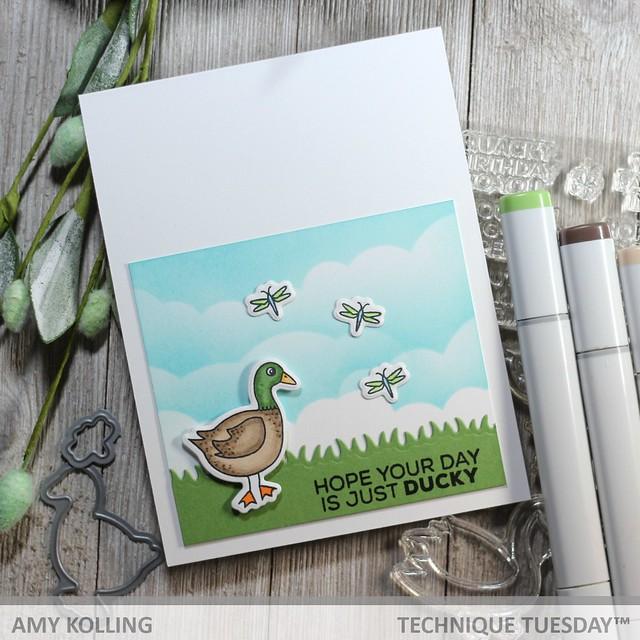 Duck Swan Goose