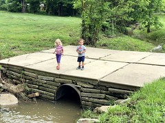 The twins play on the little bridge over the stream on our bike ride yesterday