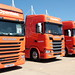 Line-up of Openfield Scania Trucks Peterborough Truckfest 2018