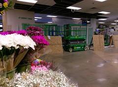 TC Kroger, former floral counter area
