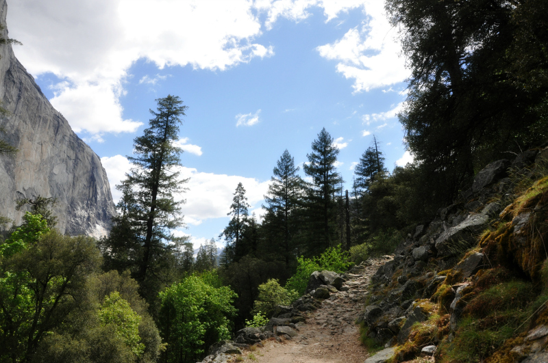Yosemite Trail @ Mt. Hope Chronicles