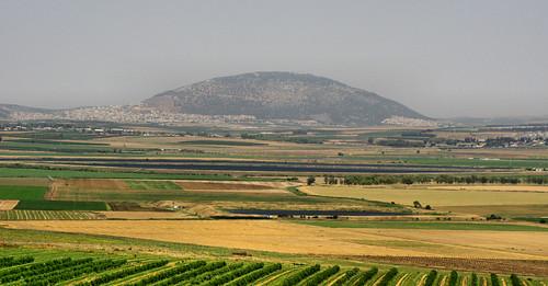 israel telmegiddo