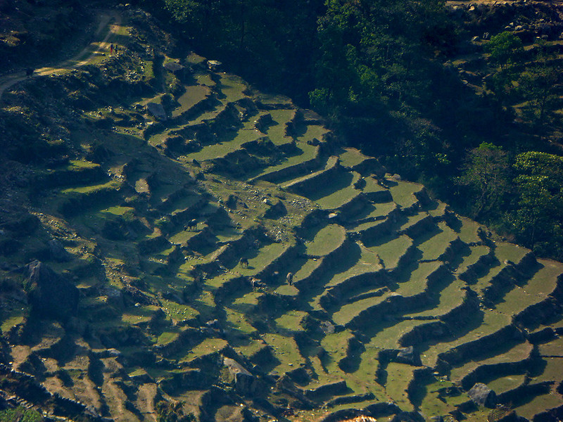 A great view of light and shadows on terraced farmland as seen from one of the Panoramic Annapurna treks