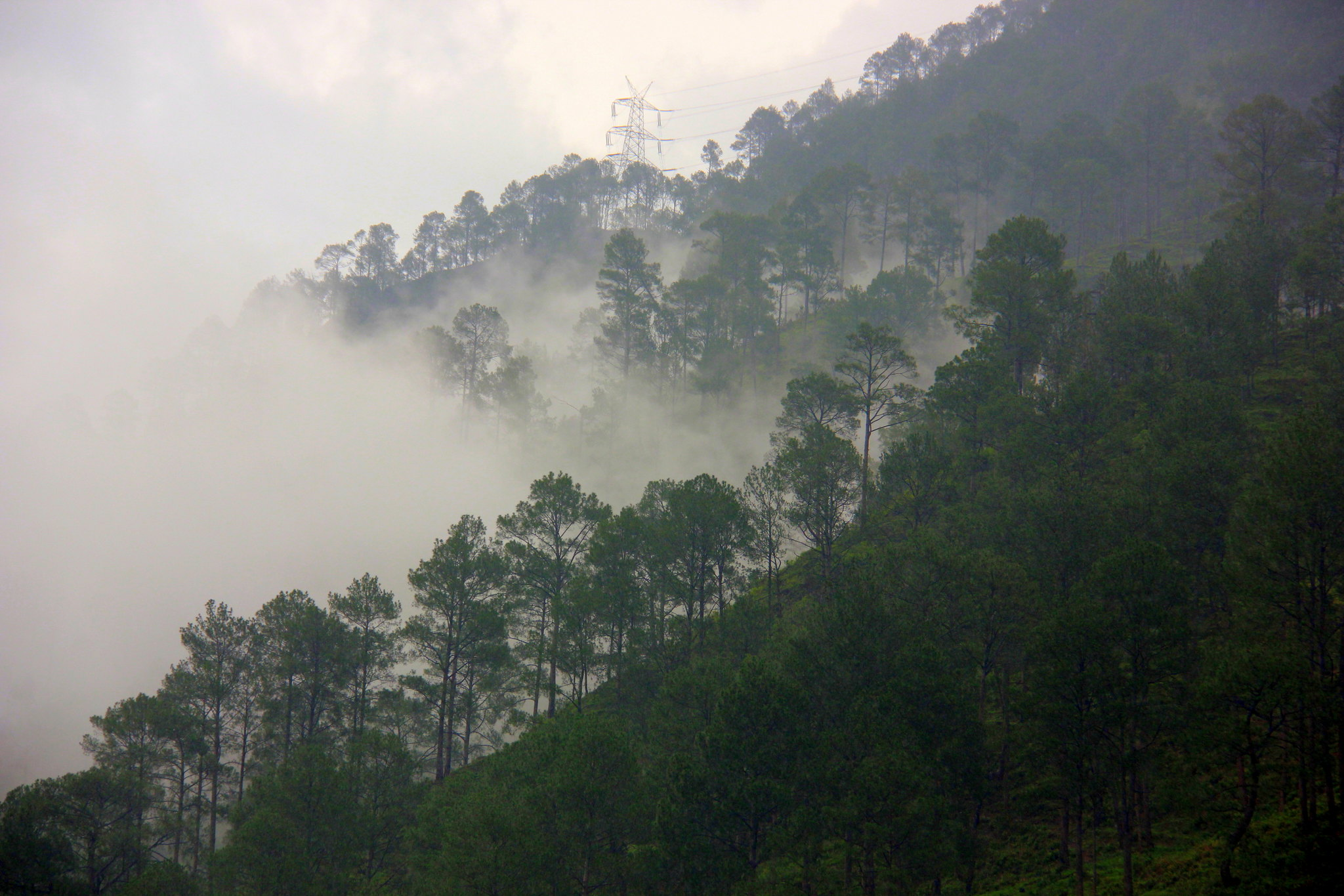 Misty mountains can be seen at the uttarakhand prayags after rain