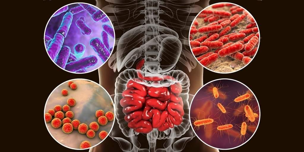 L'inflammation est-elle déclenchée par l'altération du microbiome ?