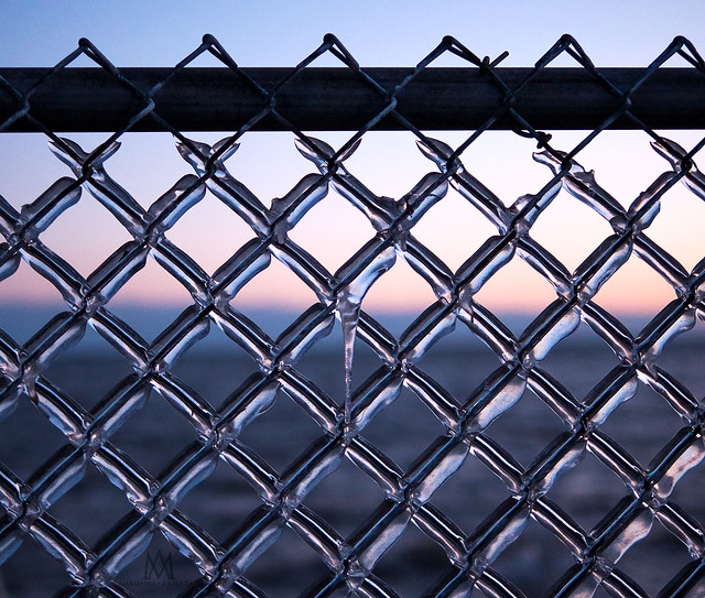 iced-chainlink fence