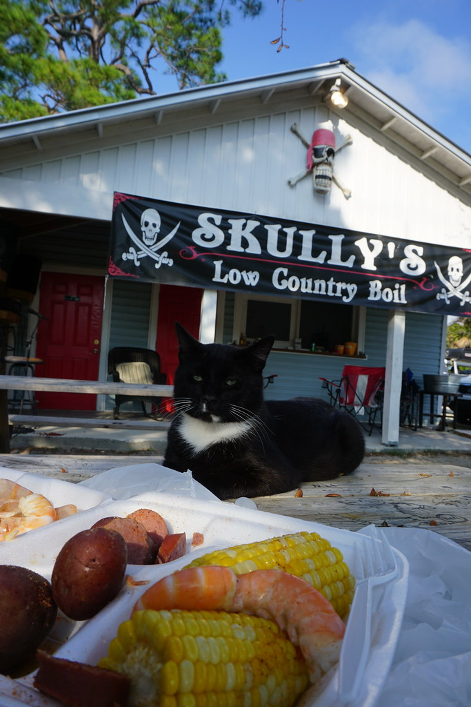 Dining with Obama, the Cat, at Skully's Low Country Boil Restaurant, Cape San Blas, Florida, May 18, 2018
