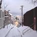 Calm Winter Day