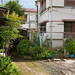 Ogicho/Odawara#4 by tetsuo5