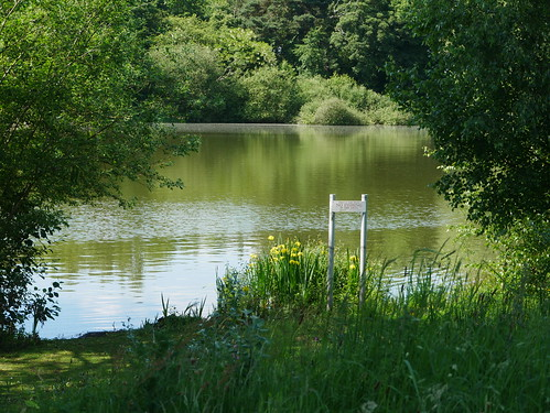 Apley Pool