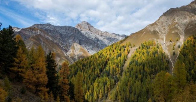Alp Trupchun - nejdivočejší místo Švýcarského národního parku