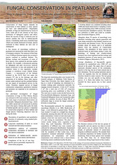 A poster on Fungal Conservation in peatlands