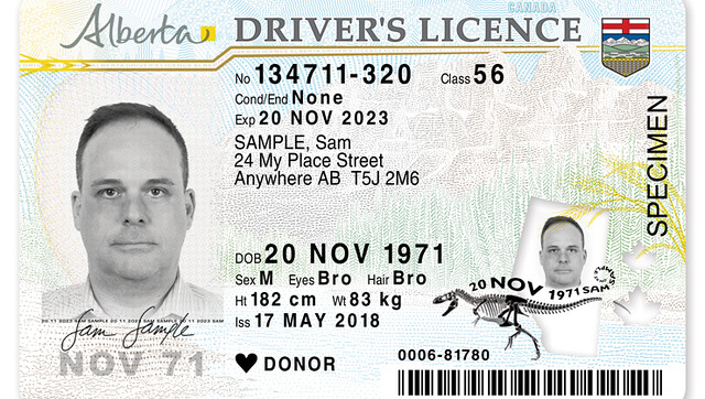Redesigned, more secure driver's licences unveiled