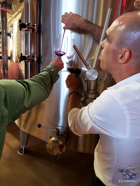 Bodegas Portia o como maridar un buen vino con la alta cocina (10)