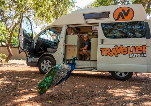 Australia Van-3