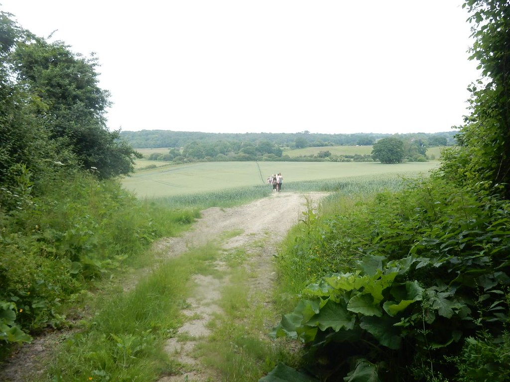 Heading back Pulborough Circular