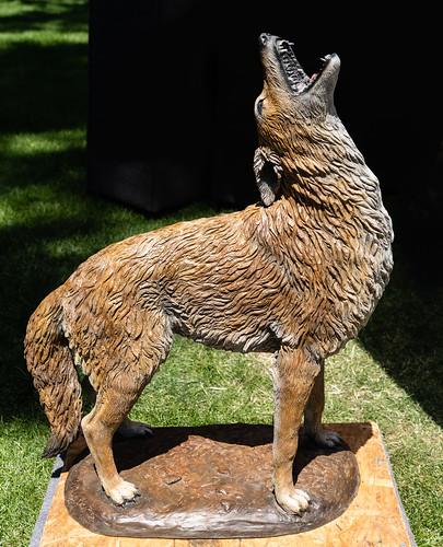 coyote_sculpture-20180527-101