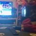 Minx enjoying Jeff Hardy Vs Daniel Bryan on WWE Smackdown this week.