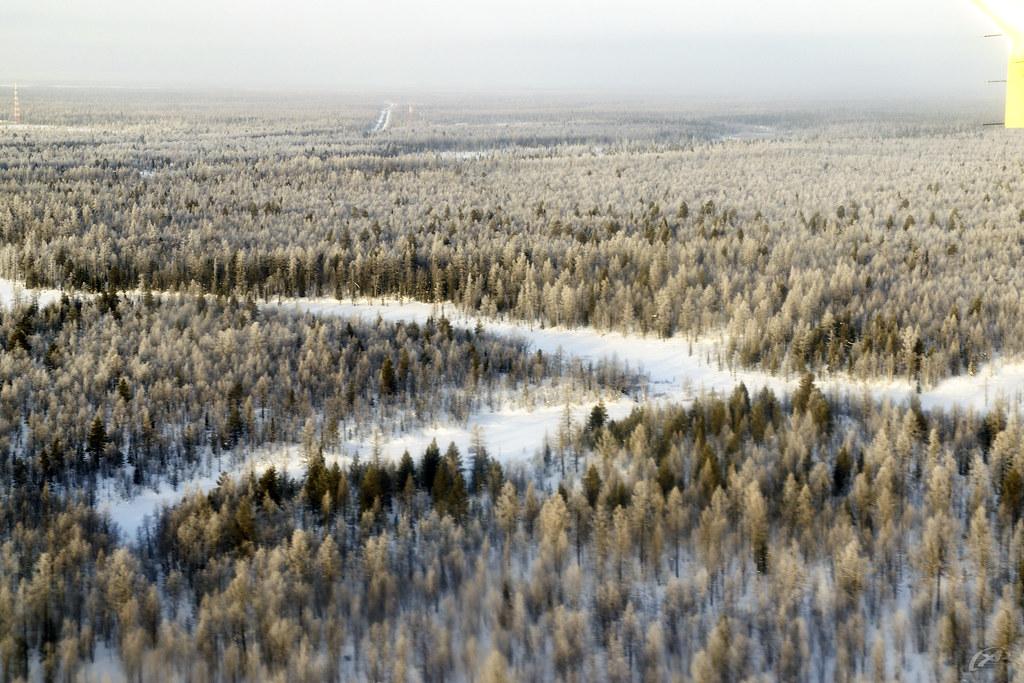 г. Ноябрьск, Ямало-Ненецкий автономный округ