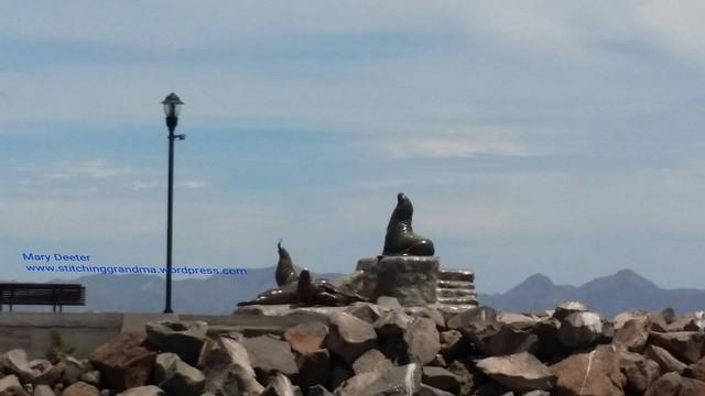 The stone seals in Loreto Mexico