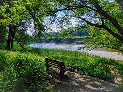 Shady spot at Chagrin River Park