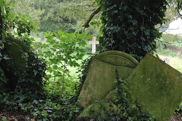 Churchyard, Piddletrenthide 5
