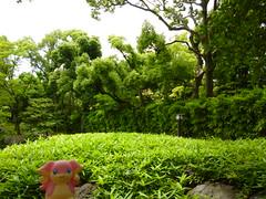 Audino in Fukagawa, Tokyo 32 (Kiyosumi Garden)