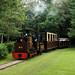 Large scale garden railway