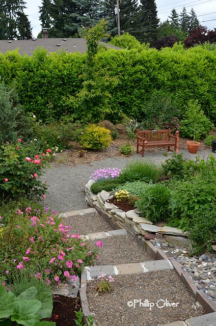 terraced-garden