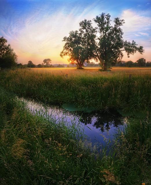 Ruhrwiesen Sunset