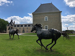 Galop - Photo of Chancé