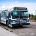 Cold Lake Transit 5008