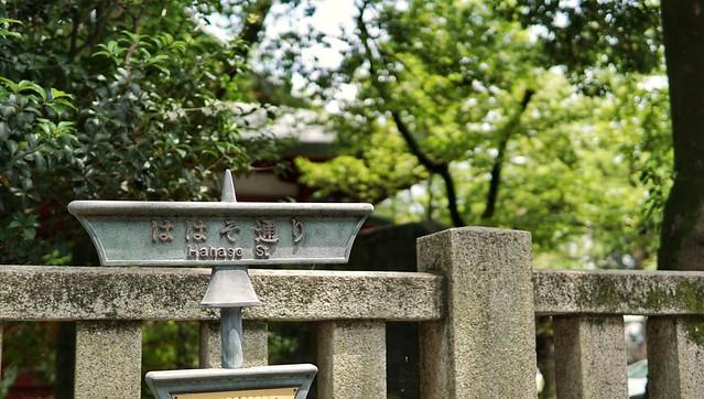 DSC09255-01秩父神社