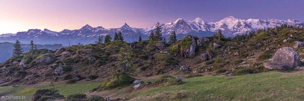 Bernese Alps panorama - Niederhorn