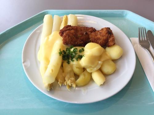 Fresh asparagus with sauce hollandaise, potatoes & small turkey steak / Frischer Spargel mit Sauce Hollandaise, Kartoffeln und kleinem Putenschnitzel
