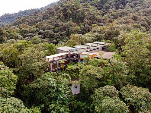 pichinchaéquateurec pierrelesage kapstock dronepix ecuador mashpilodge amazonia jungle cloudforest mavicair